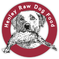 Henley's - British Bulls Pizzle (Raw)